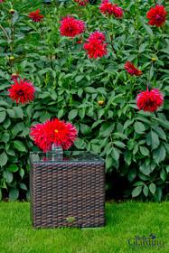 Stolik ogrodowy II - ciemny brąz