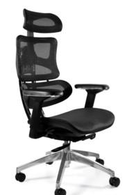 Fotel biurowy ERGOTECH - czarny/chrom