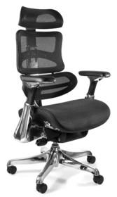 Fotel biurowy ERGOTHRONE - czarny