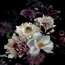 Obraz na szkle FLOWERS IV 80x80